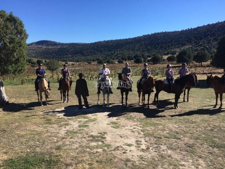 Equitazione di gruppo