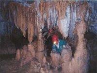 徽标探索各种洞穴