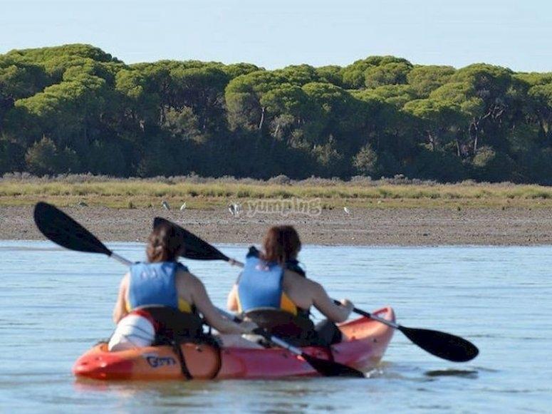 Visita el Parque Nacional de Doñana en kayak