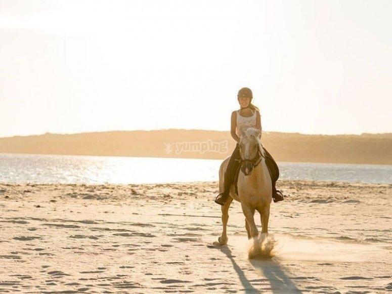 Descubre el Parque Natural del Estrecho, a caballo