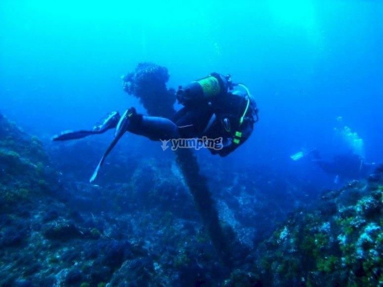 Bucea entre el Atlántico y el Mediterráneo