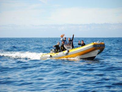Excursión Snorkel en embarcación, Tenerife