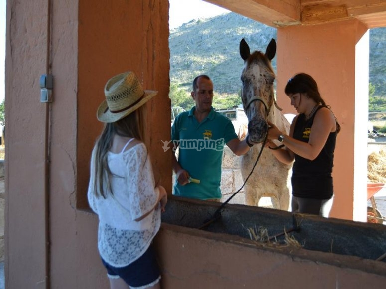 Getting the horses ready at our riding club in Alcudia