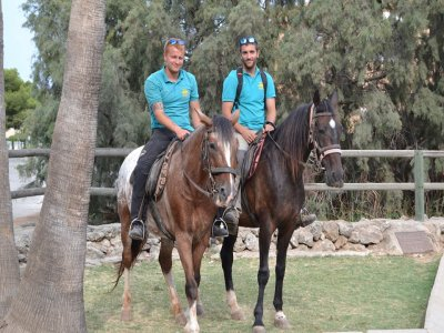 Horse riding in Mallorca 1 hour