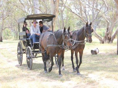 在马车情人节的浪漫骑