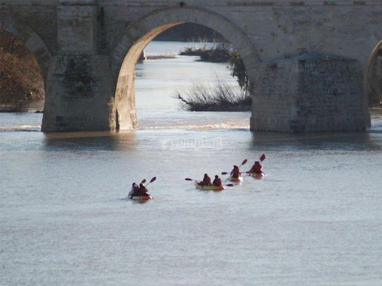 Travesía en kayak en el Guadalquivir
