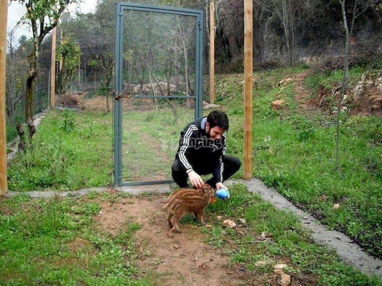 Acércate al zoológico de Sierra Morena