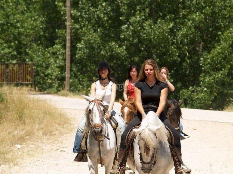 Explora la Serranía de Cuenca a caballo