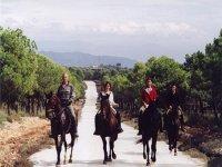 Horseback riding through Andalusia