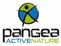 Pangea Active Nature Escalada