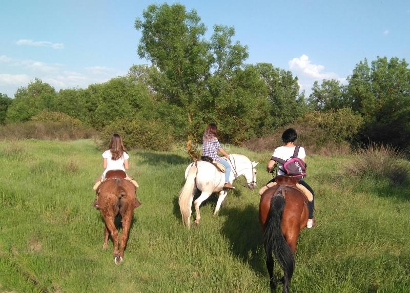 res_o-36150-rutas-a-caballo_de_gemma-guerra-de-la-fuente_14934567654191.jpg