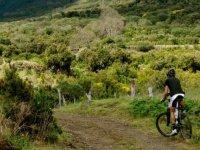 los mejores campos en bici