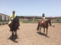 骑马课程1小时Jinamar