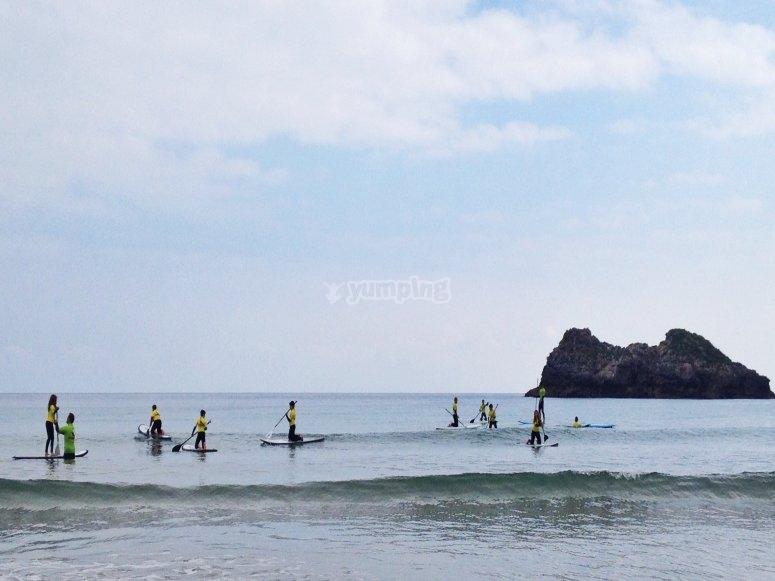Different levels surf classes