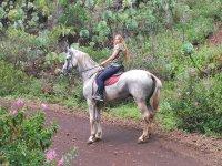 Chica subida en el caballo