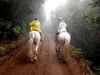 Dia nuboso a caballo