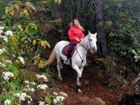 Chica saliendo del bosque a caballo