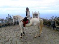 Una parada en el mirador a caballo