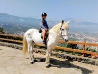 Con el caballo en la valla