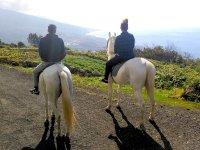 Mirando el horizonte a caballo