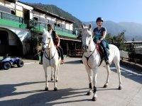 En preciosos caballos blancos