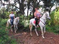 Excursion con equinos por paraje natural