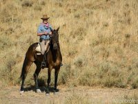 Subido al caballo