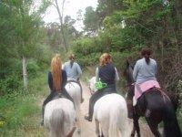 Caballos recorriendo Cuenca