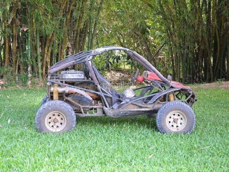 Descubre Puente Villarente pilotando un buggy