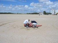 准备的队徽上的沙子驯服风