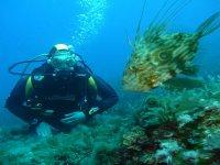 Practicar buceo en el Mediterráneo
