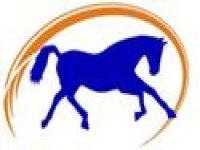 Centro de Equitacion Regaton Despedidas de Soltero