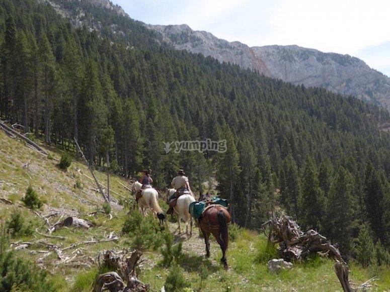 Paseo a caballo por las montañas de Llavorsí