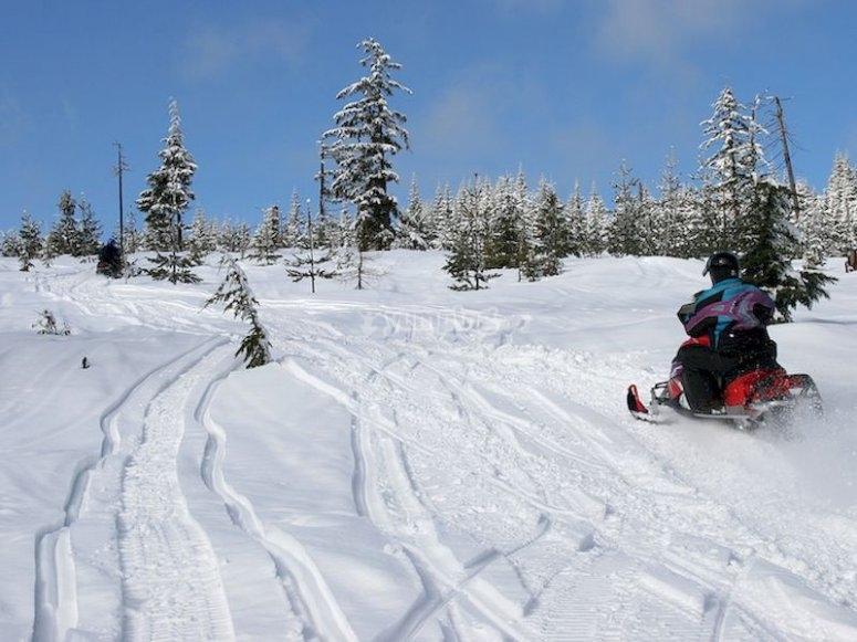 Ruta en moto de nieve por los bosques cercanos a Baqueira Beret