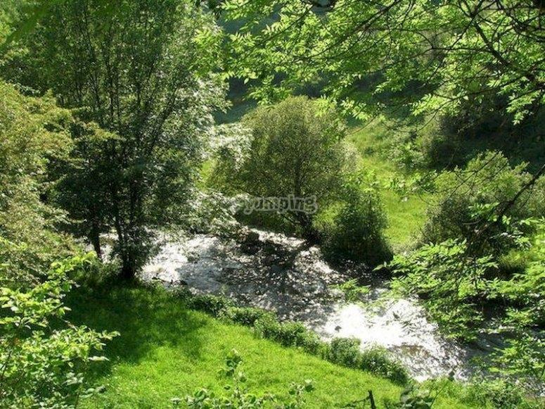 Descubre el pasado celta en la tierra de Terra-Chá