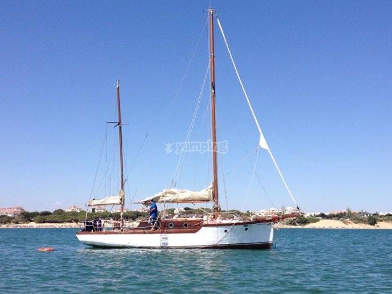 在海上帆船