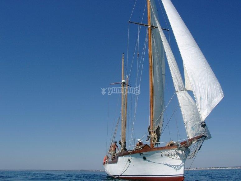 La Sofia Navegando