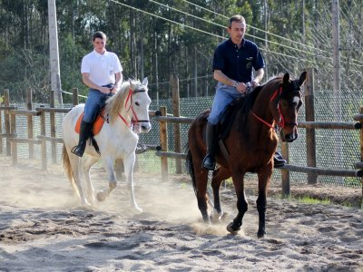 Lodging + Horse Riding Lesson on Valentine