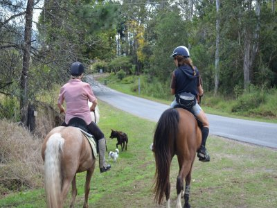 Horse ride, rafting & lodging St. Valentine's