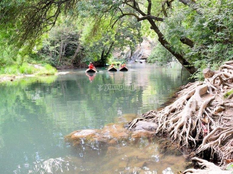 Kayak por el río Ega