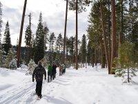 Rutas en raquetas de nieve