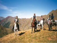 Discover the Pyrenees on the back of a horse
