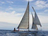 Tago navegando en el mar
