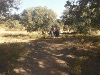 Bosque Mediterraneo a Caballo