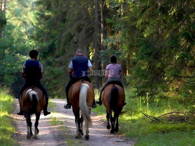 Salvaterra de Miño a caballo
