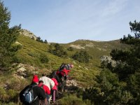 Practice hiking through the Sierra de Guadarrama