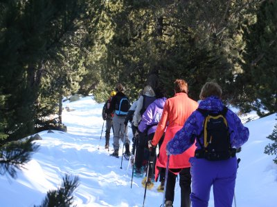 Snowshoeing half-day excursion, Lleida