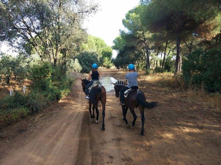 Montar a caballo en los alrededores de Doñana
