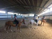 Lecciones de equitación