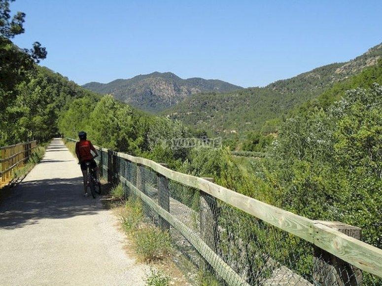 Ruta BTT en Tortosa